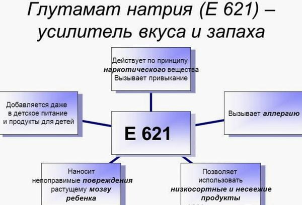 Схема действия глутамата натрия