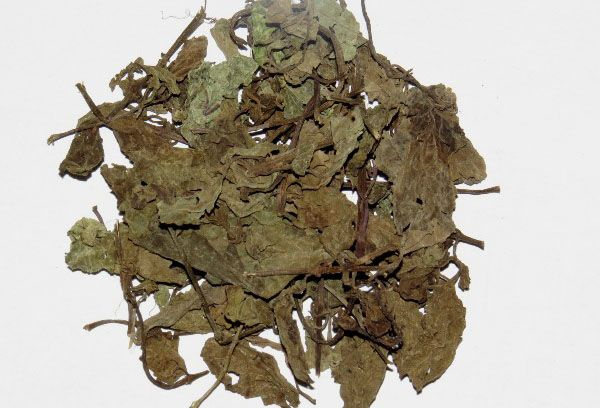 Сушеные листья