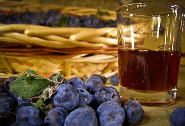 Терн и терновый сок