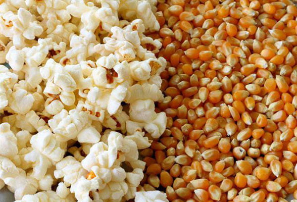 Зерна кукурузы и попкорн