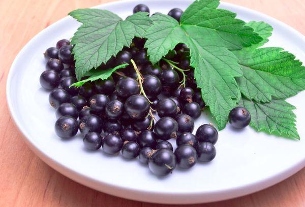 черная ягода