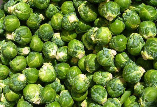 кочаны брюссельской капусты