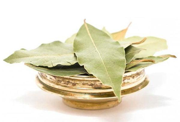 Сушеные лавровые листья