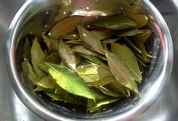 Промывание листьев лавра