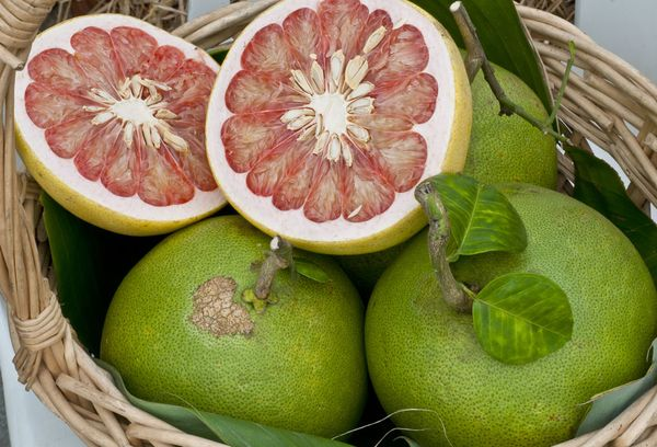 фрукт памело