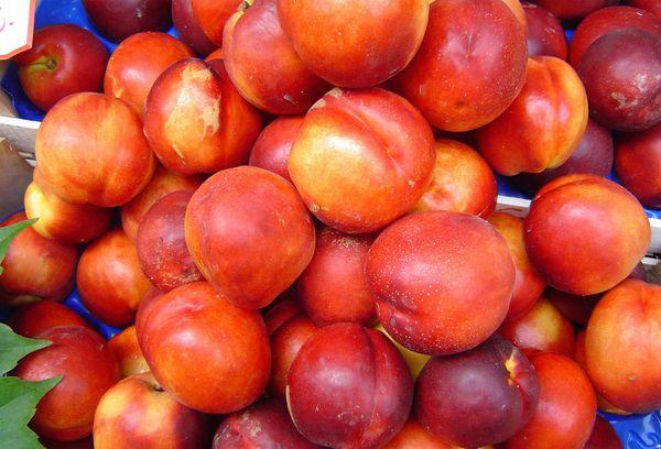 Сладкие фрукты, красные нектарины