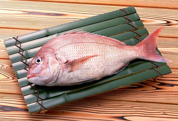 свежая рыба Морской окунь