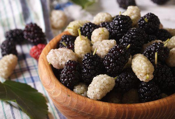 ягоды черная и белая шелковица