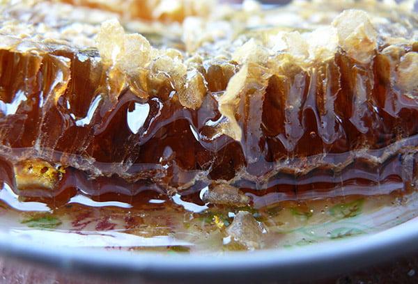 Соты с каштановым медом