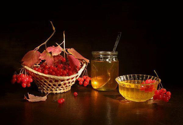 калина красная и банка с медом