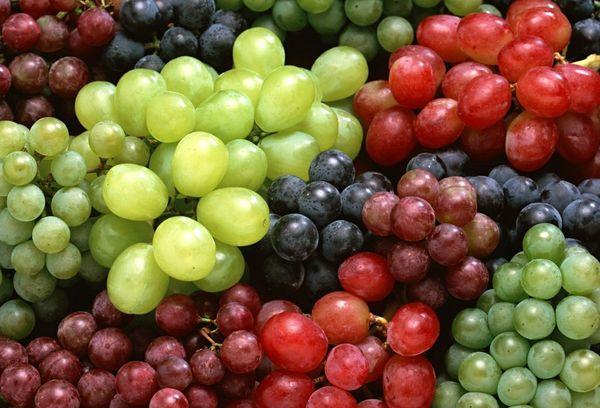 Виноградный сок – польза и вред, противопоказания к приему