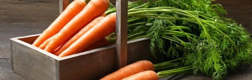 Морковная ботва