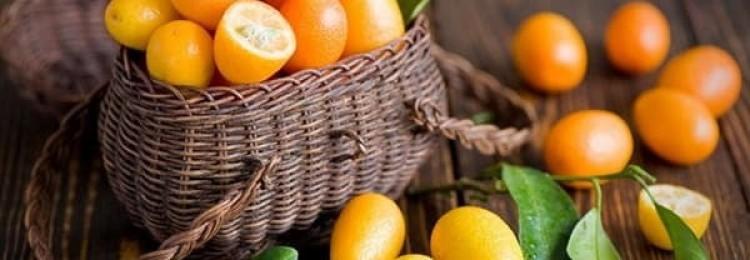 Кумкват: полезные свойства и способы приготовления экзотического фрукта