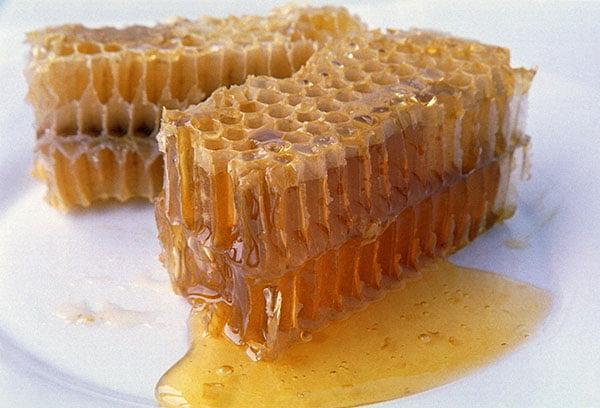 Мед в сотах — польза и вред продукта пчеловодства