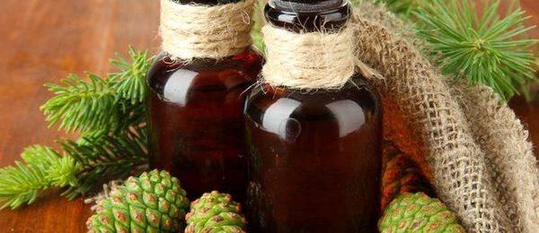 зеленые сосновые шишки и две бутылки