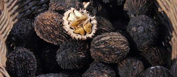 черные орехи