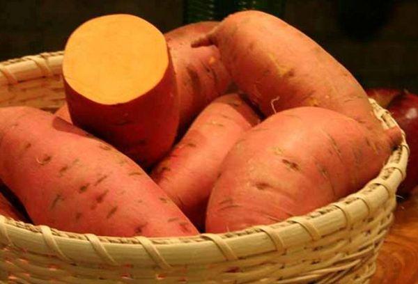 Батат-картофель
