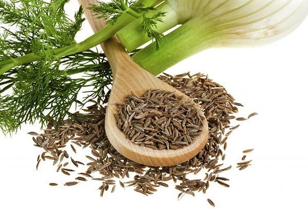Семена и зелень фенхеля