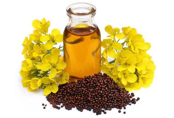 Цветки, семена и масло горчицы