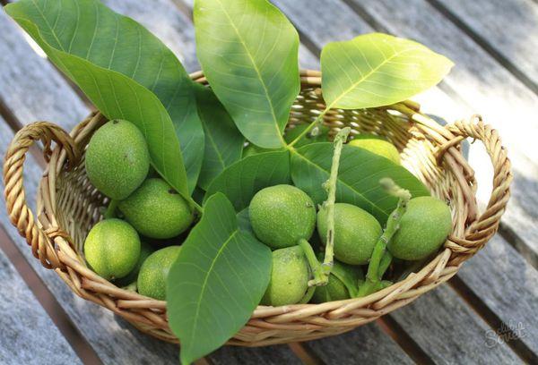 зеленые грецкие орешки