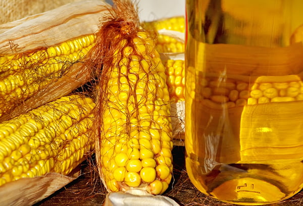 Масло из кукурузы