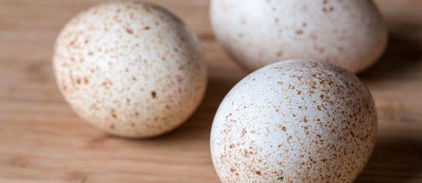 цесаринные яйца