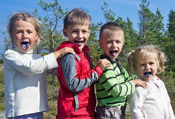 Дети наелись черники