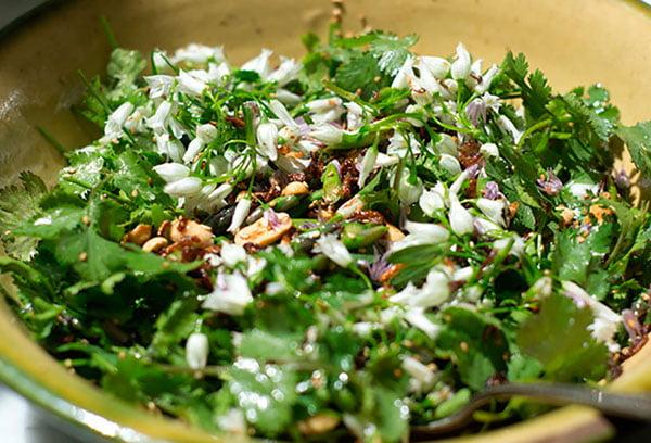Зеленый салат с кинзой