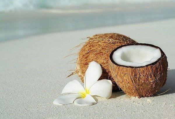 кокосы на песке у моря