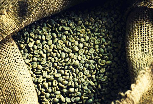 кофейные зерна зеленые в мешке