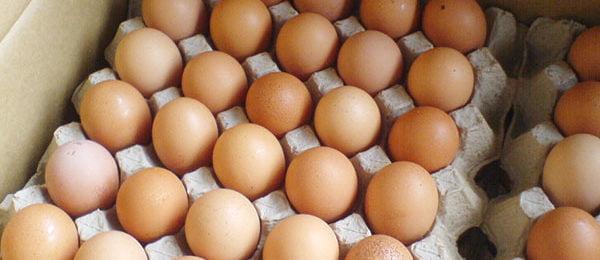 Лоток с куриными яйцами