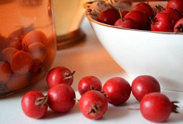 Настой из ягод боярышника