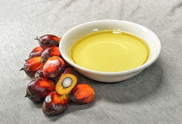 Масло из плодов пальмы