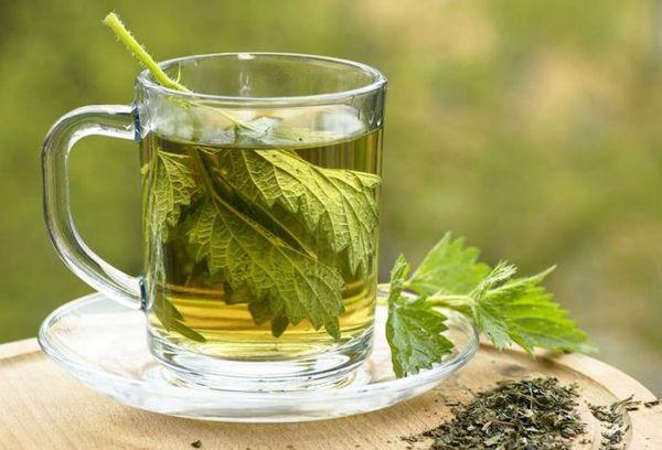 Рецепт крапивного чая
