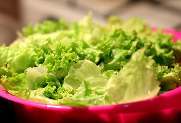 Салатные листья латук