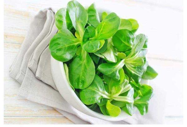 Листья для салата