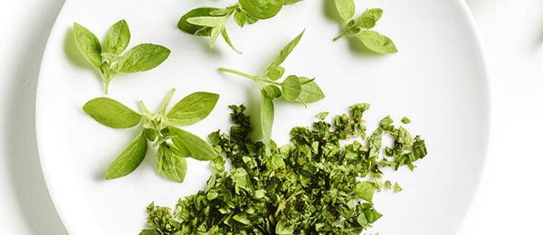 Свежие листья орегано на тарелке