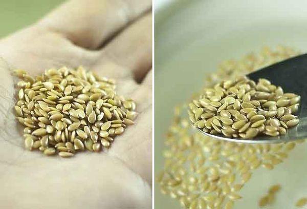 Льняное зерно