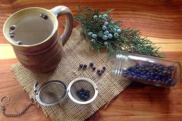 Использование ягод можжевельника для заваривания чая